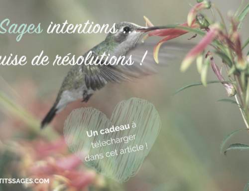 De Sages intentions en guise de résolutions !